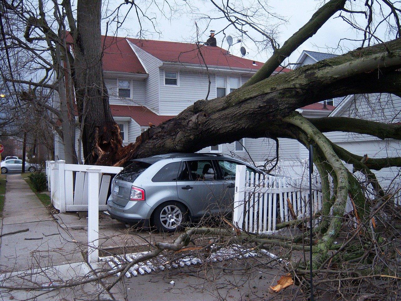 storm, damage, hurricane